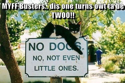 MYFF Busters.. dis one turns owt ta be TWOO!!