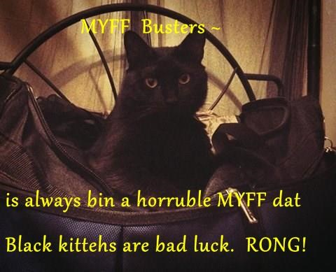 MYFF  Busters ~  is always bin a horruble MYFF dat Black kittehs are bad luck.  RONG!