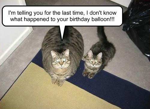 I'm telling you for the last time, I don't know what happened to your birthday balloon!!!