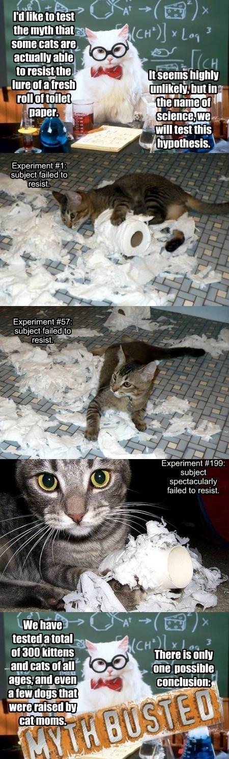 The Toilet Paper Myth