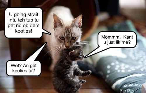 KKPS Kooties - Moms on the alert!