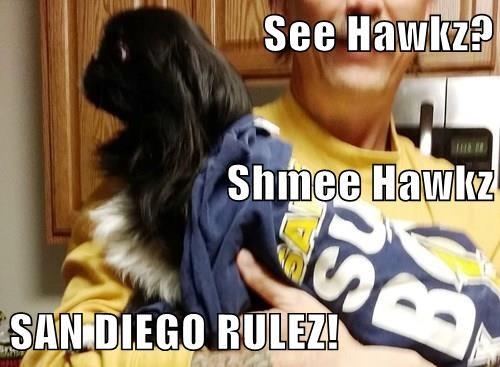See Hawkz?  Shmee Hawkz SAN DIEGO RULEZ!