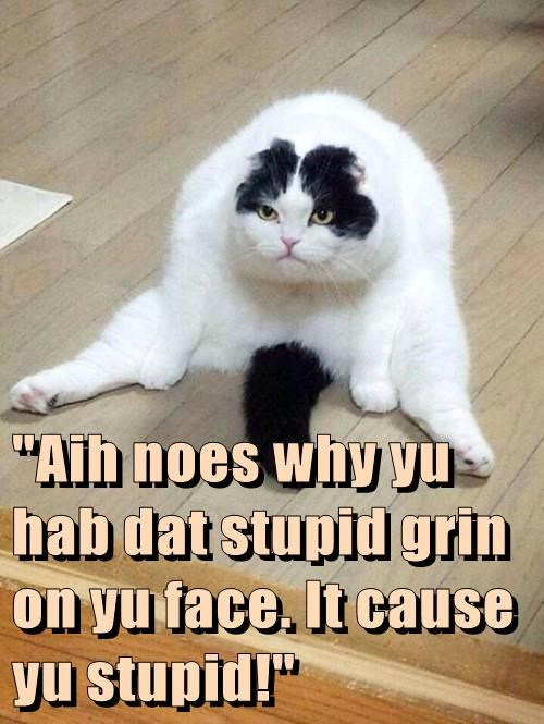 """Aih noes why yu hab dat stupid grin on yu face. It cause yu stupid!"""