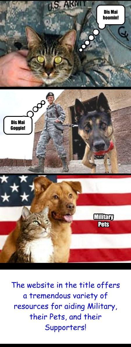 Aiding Military and Petshttp://www.operationwearehere.com/Pets.html