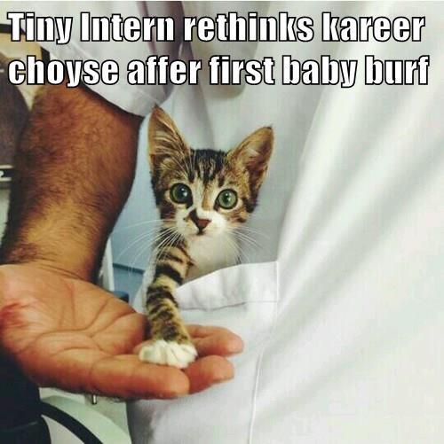 Tiny Intern rethinks kareer choyse affer first baby burf