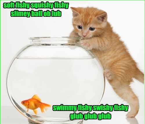 If A Kitty Wrote The Ditty