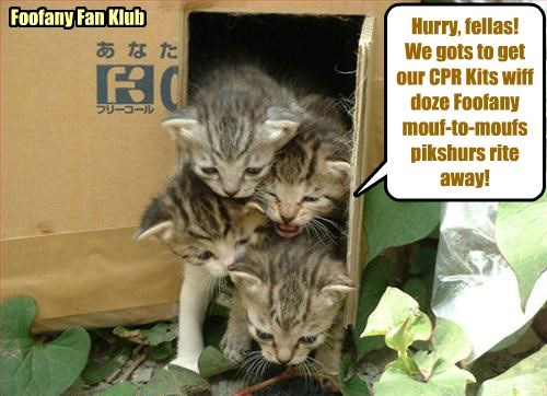 Wiff teh breaking news of teh updated Bellbottoms CPR Kit dat habs lots ob Foofany videos an' fotos ob her doin' mouf-to-moufs wiff Stewie, Foofany Clubs eberywhere rush to get dare CPR Kits..