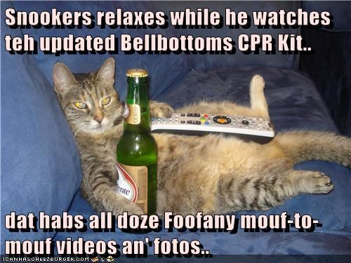 Snookers relaxes while he watches teh updated Bellbottoms CPR Kit..  dat habs all doze Foofany mouf-to-mouf videos an' fotos..