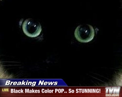Breaking News - Black Makes Color POP.. So STUNNING!