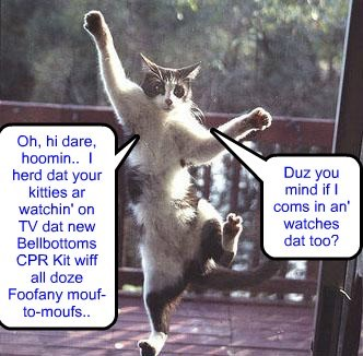 Dis kittie iz desperate to watch teh new Bellbottoms CPR Kit..