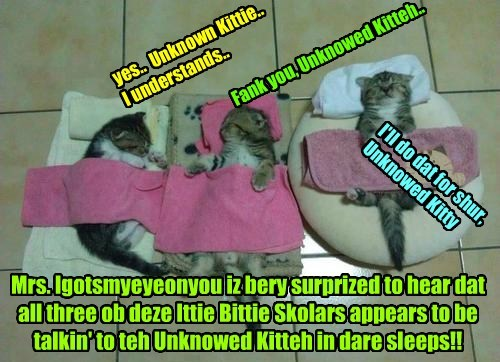 Another most puzzling insidents occurs wher teh Unknown Kittie seems to be able to talk to som kitties while dey iz sound asleeps!! How can dis be?