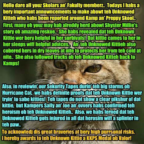 In an eggstraordinary annowncement abowt teh Unknown Kittie, Principal Dontebanfinkaboutit habs revealed new informashuns an' awarded teh Unknown Kittie a prestigious KKPS Medal of Valor!