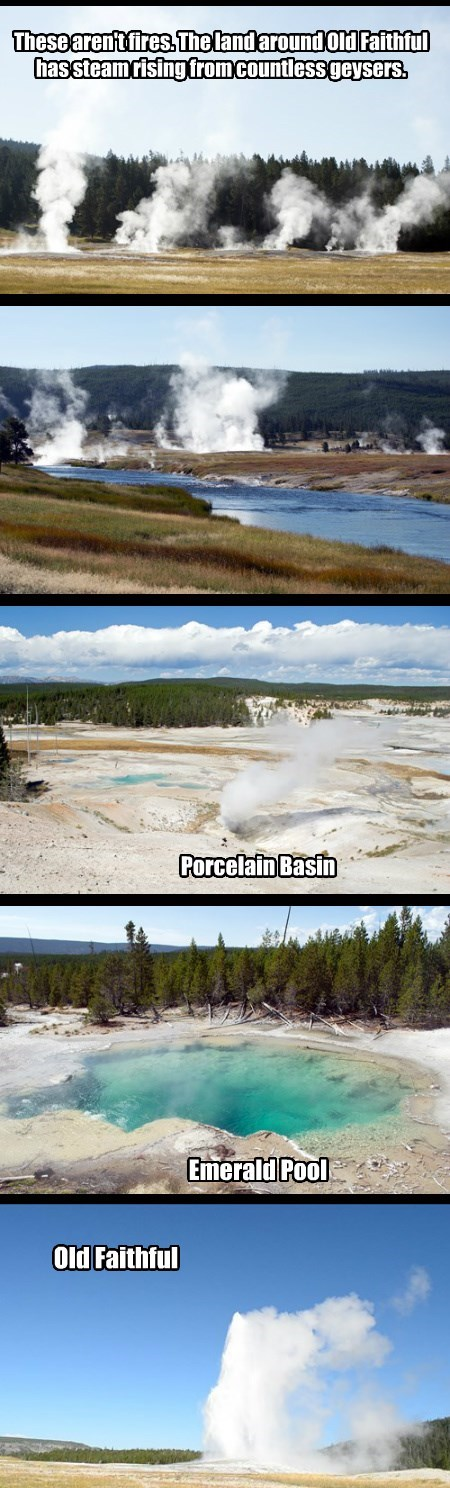 Old Faithful and Mineral Pools