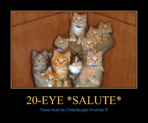 20-EYE *SALUTE*