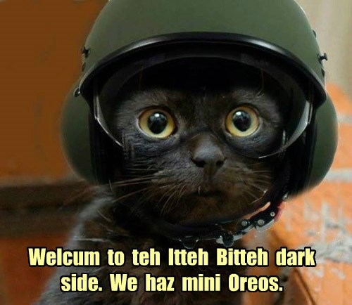 Welcum  to  teh  Itteh  Bitteh  dark  side.  We  haz  mini  Oreos.