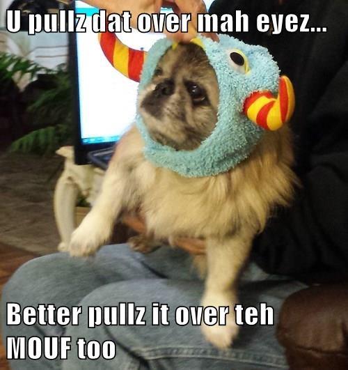 U pullz dat over mah eyez...  Better pullz it over teh MOUF too