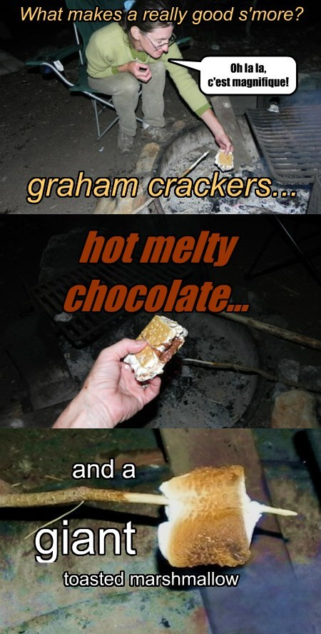 What makes a really good s'more