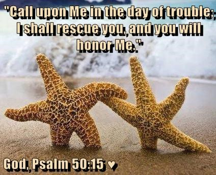 """""""Call upon Me in the day of trouble; I shall rescue you, and you will honor Me.""""  God, Psalm 50:15 ♥"""