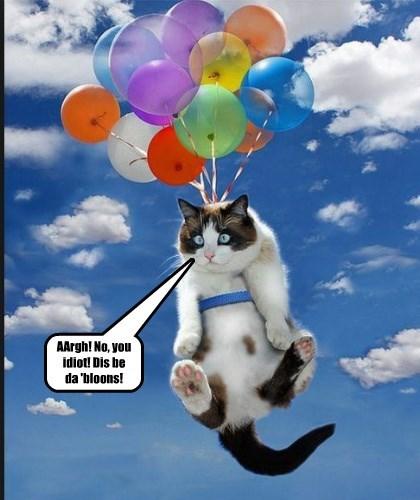 AArgh! No, you idiot! Dis be da 'bloons!