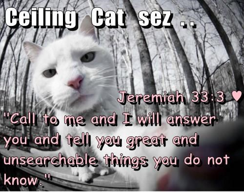 """Jeremiah 33:3 ♥ """"Call to me and I will answer you and tell you great and unsearchable things you do not know."""""""