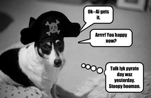 Ye Scurvy Dog!