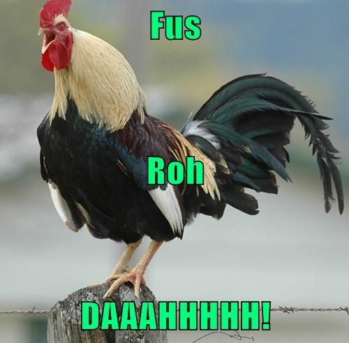 Fus Roh DAAAHHHHH!