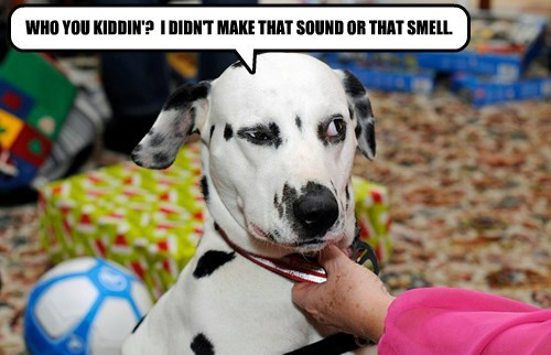 WHO YOU KIDDIN'?  I DIDN'T MAKE THAT SOUND OR THAT SMELL.