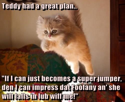 "Teddy had a great plan..  ""If I can just becomes a super jumper, den I can impress dat Foofany an' she will falls in lub wiff me!"""
