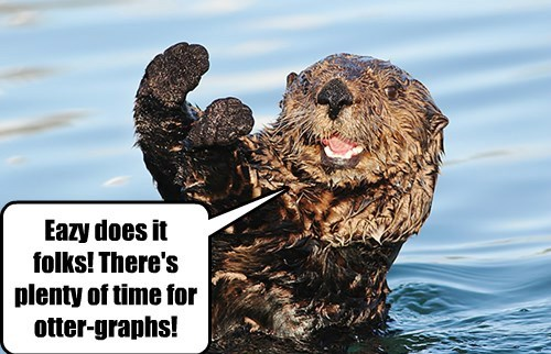 Otter Meets His Adoring Fans!