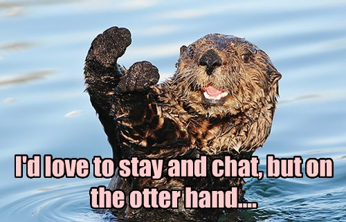 I'd love to stay and chat, but on the otter hand....