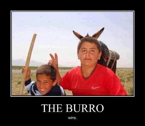bunny ears,burro,kids,funny