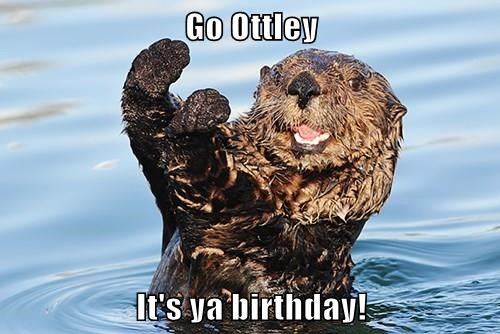 Go Ottley  It's ya birthday!