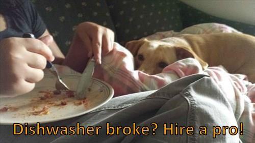 Dishwasher broke? Hire a pro!