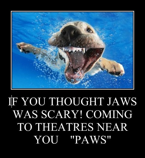 "IF YOU THOUGHT JAWS WAS SCARY! COMING TO THEATRES NEAR YOU    ""PAWS"""