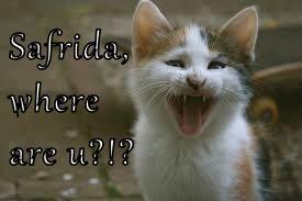 Safrida, where are u?!?