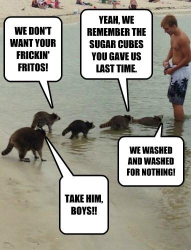 WE DON'T WANT YOUR FRICKIN' FRITOS!