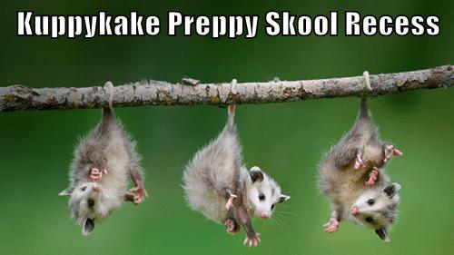 Kuppykake Preppy Skool Recess