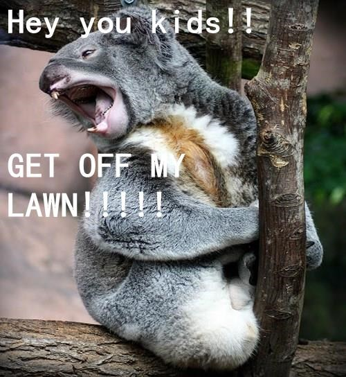 Hey you kids!! GET OFF MY LAWN!!!!!