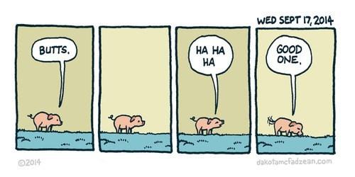 jokes,pig,critters,web comics