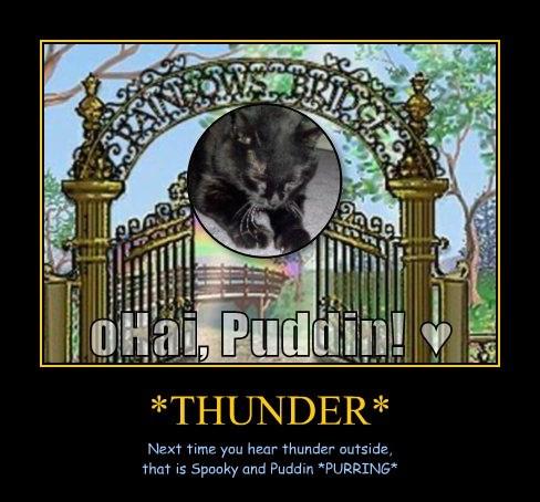 *THUNDER*