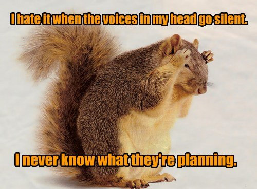 Are You Sure Your Acorns Are Safe?