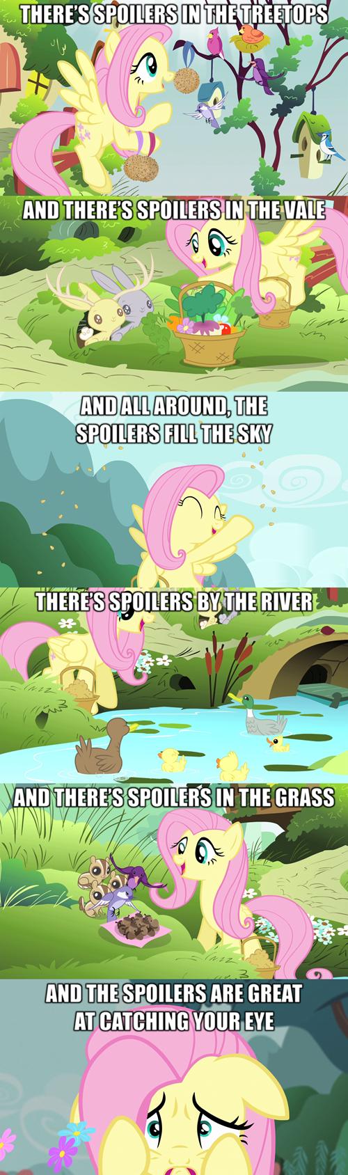 fluttershy,spoilers,rainbow rocks