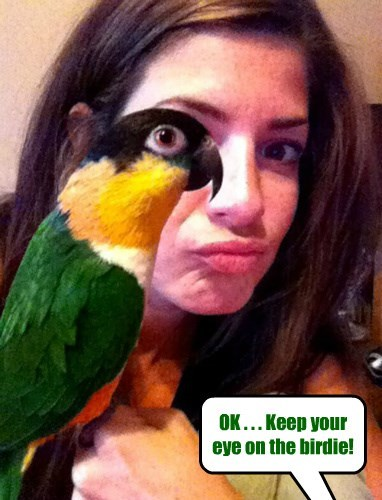 Taking photos with animals... just a bit more challenging than without