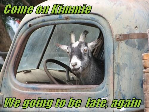Come on Kimmie   We going to be  late, again