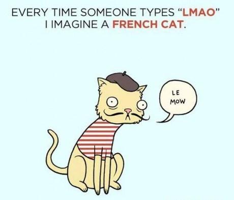 LMAO Cats