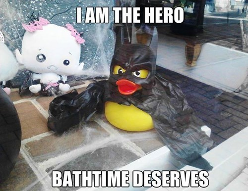 The Duck Knight