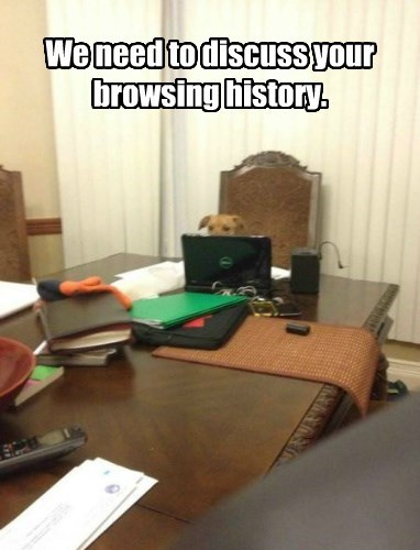 We need to discuss your browsing history.