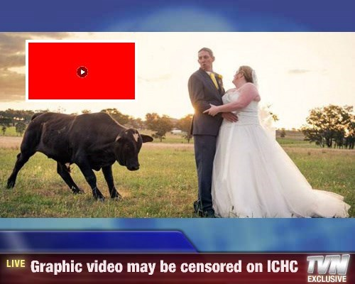 Breaking News - Graphic video may be censored on ICHC