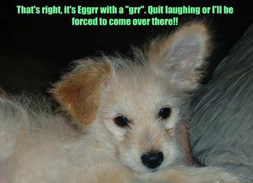 """That's right, it's Eggrr with a """"grr"""". Quit laughing or I'll be forced to come over there!!"""