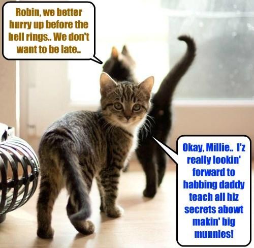 "Millie Tabishsmythe an' Robin Banks head off to class together.. Dey ar eggsited to take teh ""Munnies"" Class dat Robin's daddy Clive iz teachin'.. Many Skolars ar takin' teh Class, so Millie an' Robin share teh same desk!"